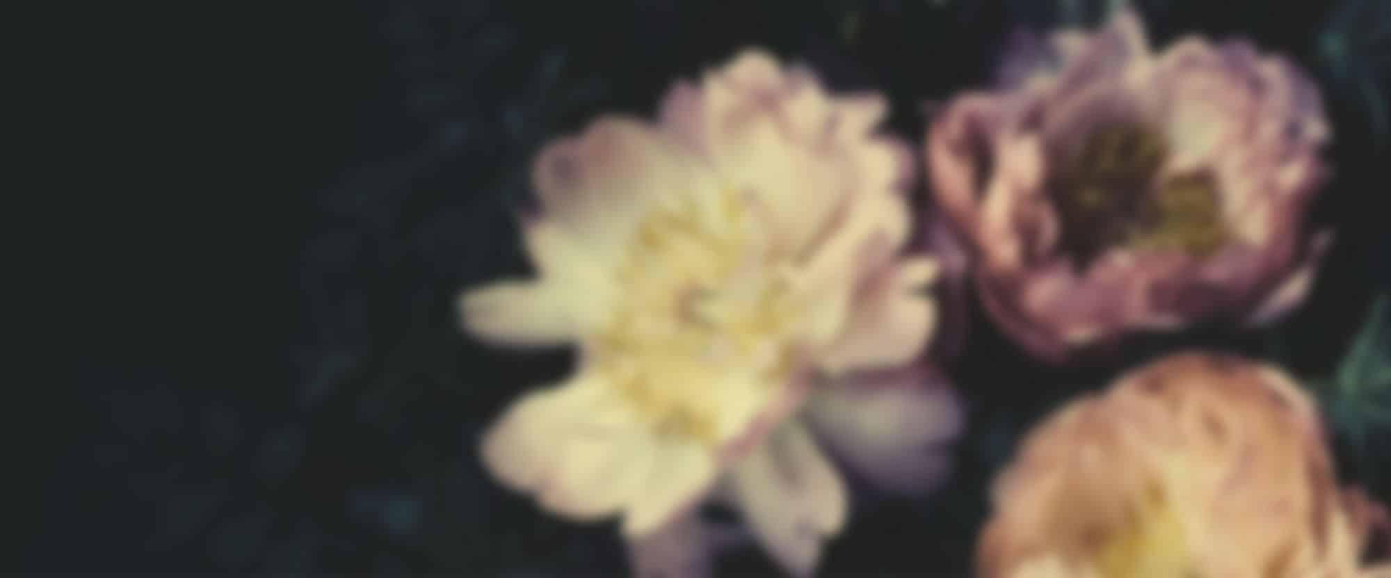 adriane m fleuriste mariage paris nous contacter